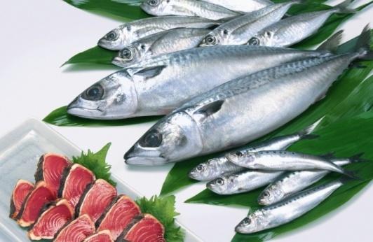 新鮮な魚やお肉
